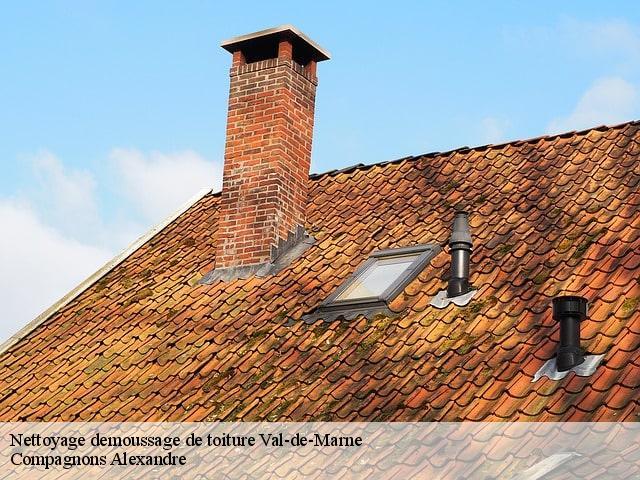 nettoyage demoussage toiture 94 val de marne t l. Black Bedroom Furniture Sets. Home Design Ideas